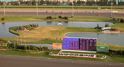 woodbine-racetrack-from-roof_0