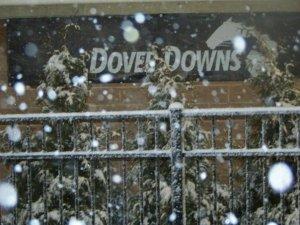 Dover snow