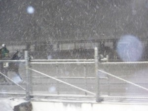 Dover snowstorm Mar 1, 2009